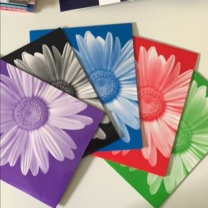 Carolina Pad Seize the daisy 2 pocket folder 5 set
